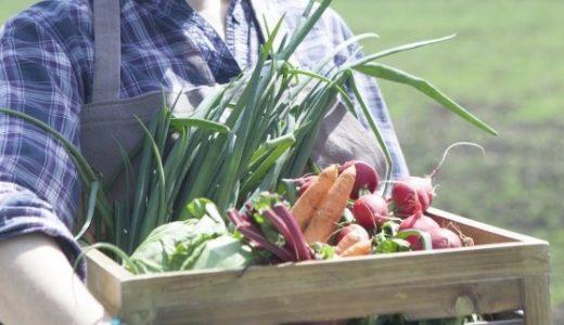 【ふるさと納税】野菜の定期便おすすめ6選2018!高還元率・無農薬なのは?