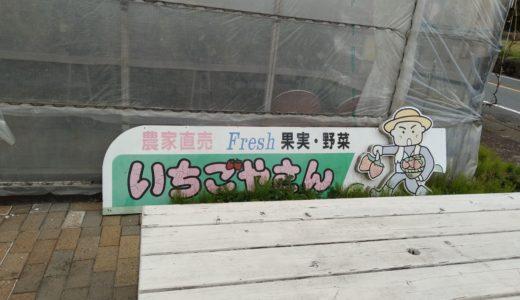 いちごやさん(静岡県富士宮市)のいちご狩り体験記!営業時間や予約方法も!
